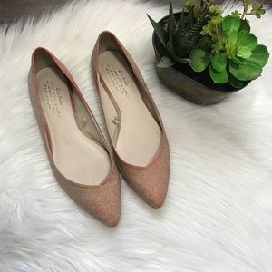 ZARA pointed toe sparkly pink flats